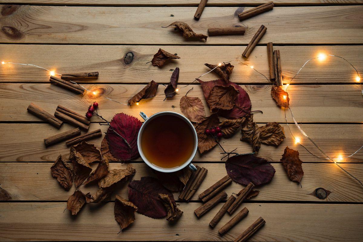 Tipos de tés que puedes tomar